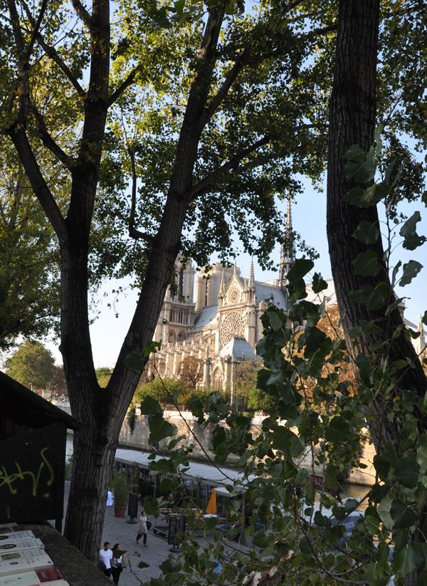 09-09-26-Notre-Dame-024