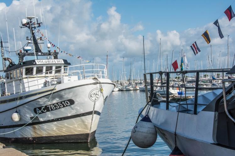 14-08-16-Port Arcachon-020-1-7