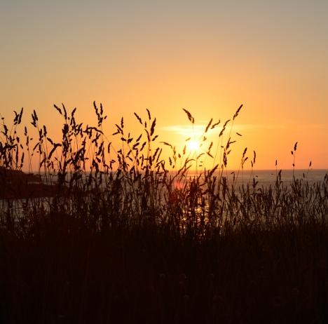 p_05072013-13-07-05_ Coucher du soleil-005