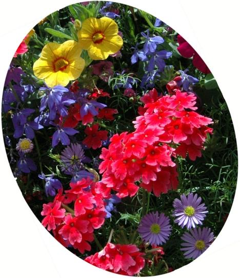Bouquet_modifié-1