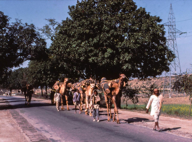 Jaunpur service de rencontres